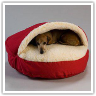 dog beds here